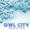 Owl City's 'Peppermint Winter' Single